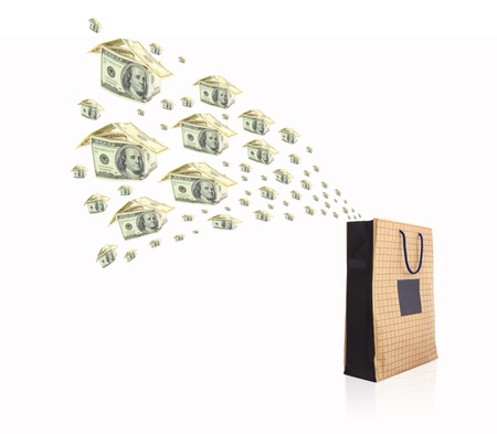 money shopping bag isolated on white background photo