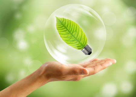 sustentabilidad: Concepto ecol�gico: mano con hoja de burbujas