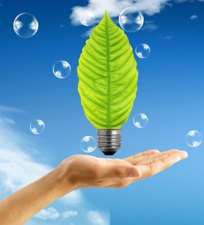 contaminacion ambiental: Concepto ecol�gico, la hoja y la l�mpara mezclan con mano Foto de archivo