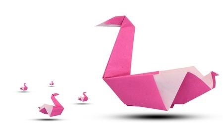 uccello origami: Rosa uccello origami su sfondo bianco