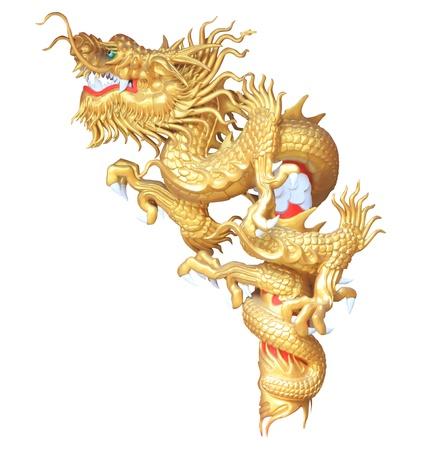 dragones: drag�n de oro sobre fondo blanco Foto de archivo