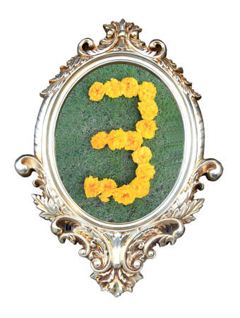 flowers number in a frame of on green grass background photo