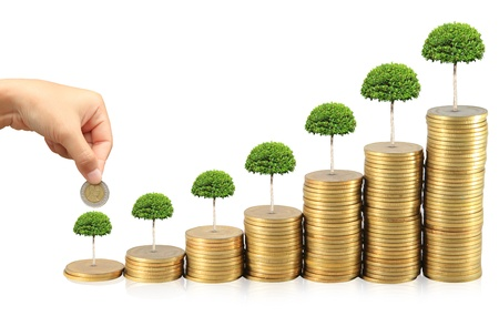 money tree: Increase your savings