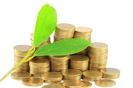 Gold coins and plant. On a white background Stock Photo - 14208496
