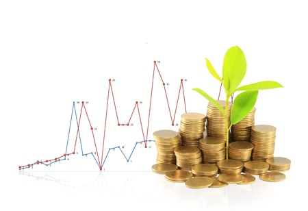 Financial graph with coins Stock Photo - 14208441