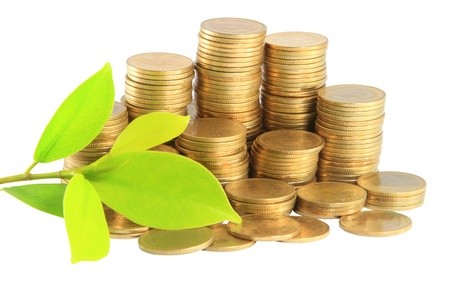 Gold coins and plant. On a white background Stock Photo - 14208487