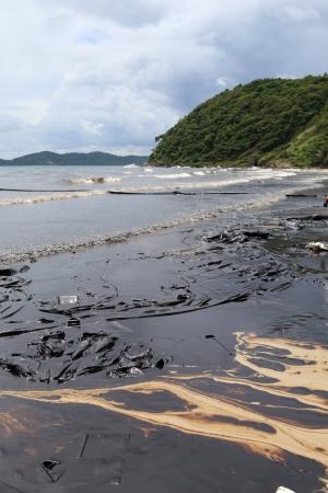 oil spill: Golfo fuoriuscita di petrolio � mostrato su una spiaggia