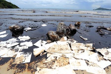 oil spill: fuoriuscita di petrolio greggio sulla spiaggia Archivio Fotografico
