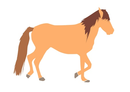Brown horse on white background - vector illustration.  Vector