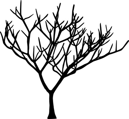 vector black silhouette of a bare tree Stock Vector - 21634567