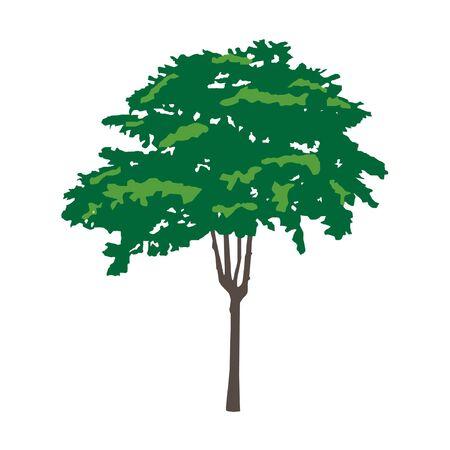 grass plot: Tree, vector illustration