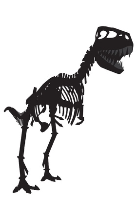 vector silhouettes of the skeleton of a Tyrannosaurus rex dinosaur  Vector