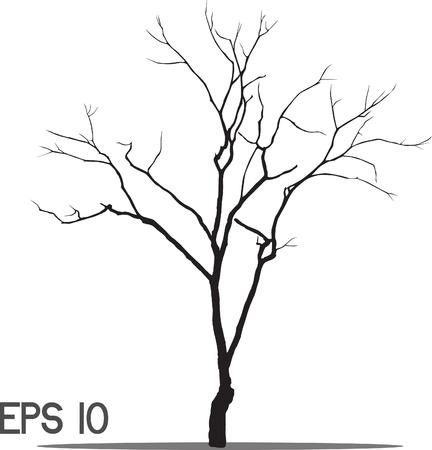 kale: vector zwarte silhouet van een kale boom