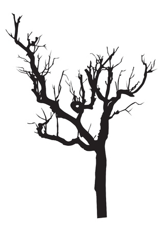 vector black silhouette of a bare tree Vector