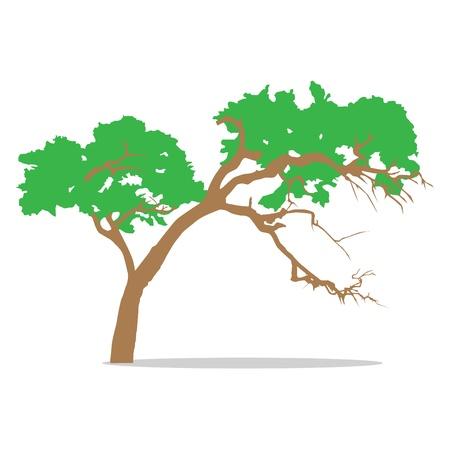 glade: Tree, vector illustration