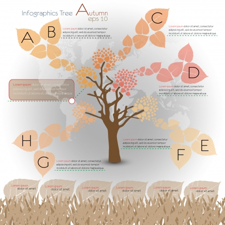 autumn  ecological infographics with tree  infographic concept Vector