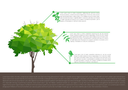 ecological infographics with tree  infographic concept