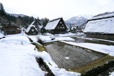 gassho zukuri: Cottage at Gassho-zukuri Village Shirakawago japan Editorial