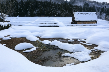 shirakawago: Cottage at Gassho-zukuri Village Shirakawago japan Editorial