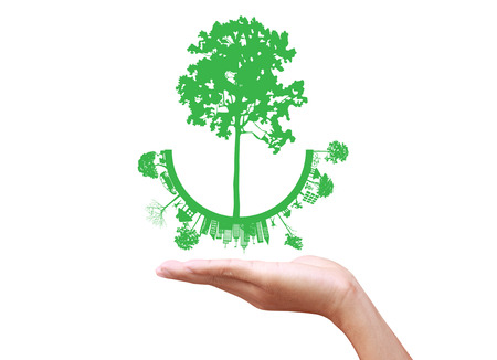 Green concept. Tree on the earth in hand photo