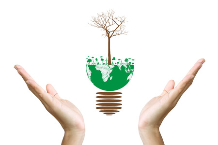 Green concept  Tree on the earth in hand photo