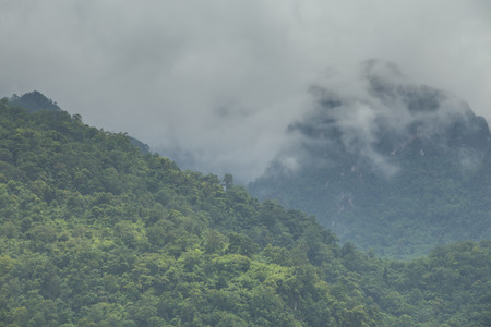 beautiful mountain scenery ,forest and misty photo