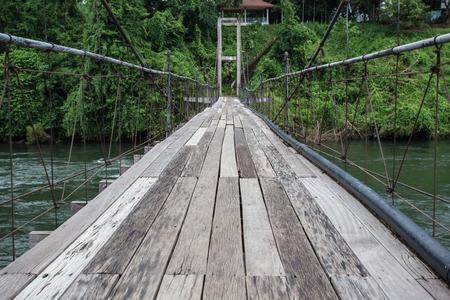Bridge to the jungle photo