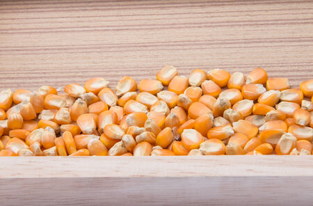 Dried raw corn kernels border on wood background photo