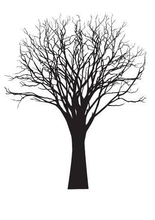 dead tree: vector black silhouette of a bare tree Illustration