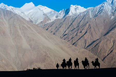 Caravan of travellers riding camels in silhoulette photo