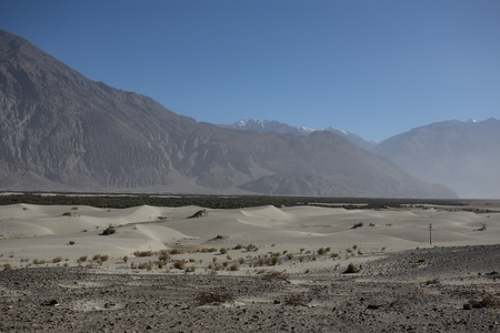leah: Nubra Valley in Ladakh Stock Photo