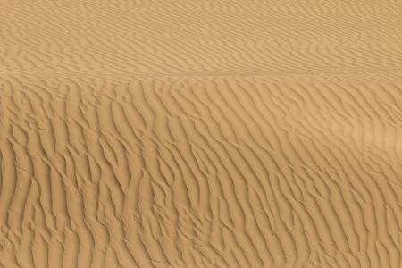 Abstract detail of sand in the dunes photo