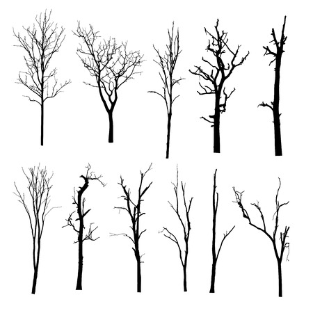 vector black silhouette of a bare tree Ilustracja