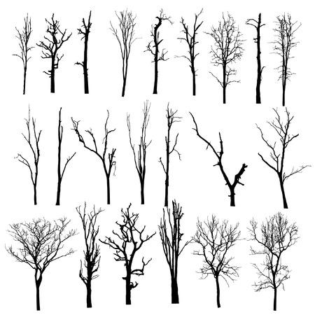 arboles secos: vector negro silueta de un árbol desnudo