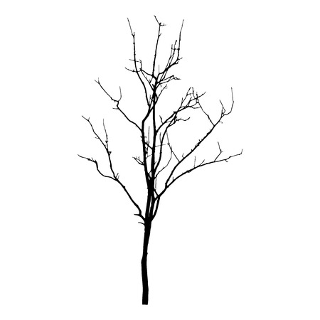 vector black silhouette of a bare tree Illustration