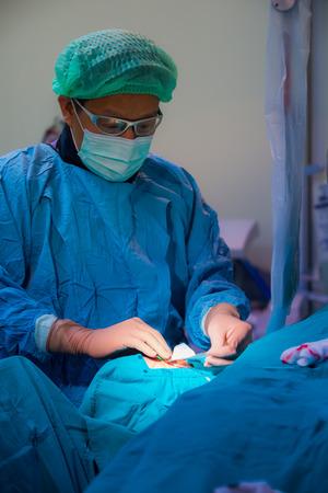 vasos sanguineos: BANGKOK, Tailandia-febrero: 16, 2015: El m�dico y el personal est�n tratando con la angiograf�a, se trata de una t�cnica de imagen m�dica se utiliza para visualizar el interior de los vasos sangu�neos