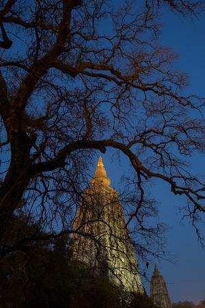gaya: Night Shot. Mahabodhi temple, bodh gaya, India. The site where Gautam Buddha attained enlightenment