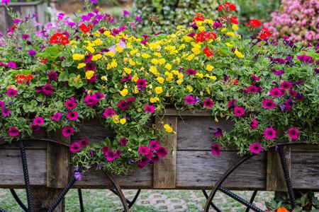 old wood farm wagon: Flowers on the wagon