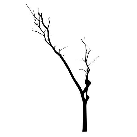 vector black silhouette of a bare tree Illustration