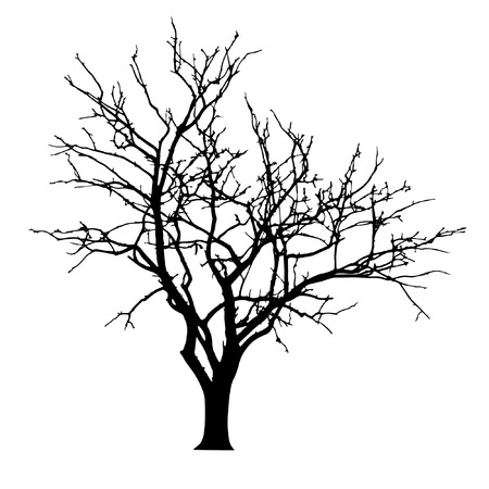 vector black silhouette of a bare tree Stock Illustratie