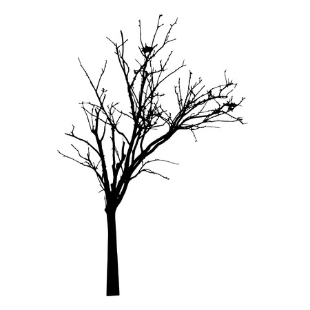 single tree: vector black silhouette of a bare tree Illustration