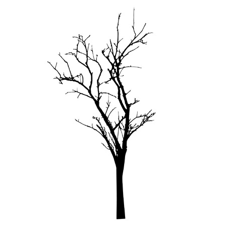 vector black silhouette of a bare tree 向量圖像