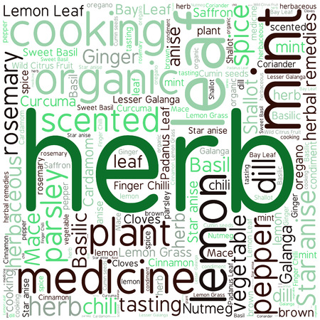sweet grass: herb tag word cloud background Illustration