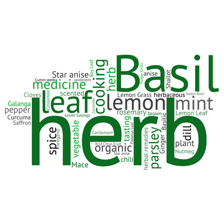 herbaceous: herb tag word cloud background Illustration