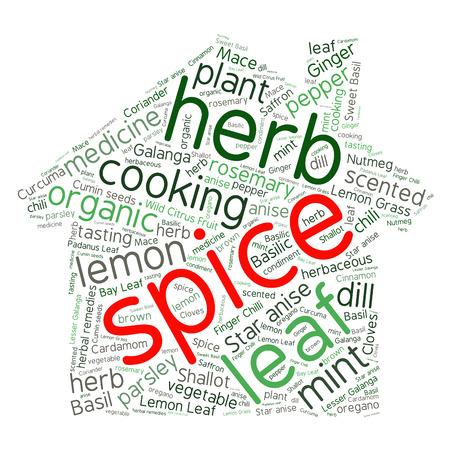 nutmeg: herb tag word cloud background Illustration