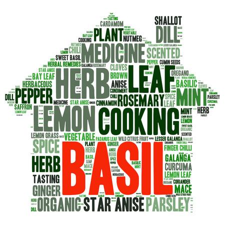 coriander: herb tag word cloud background Illustration