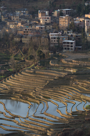 yuan yang: View of Yuan Yang Rice terraces