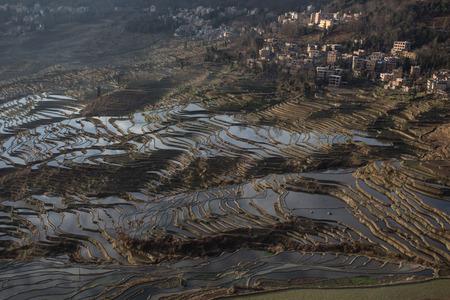 yuan yang: View of Yuan Yang Rice terraces with sunrise