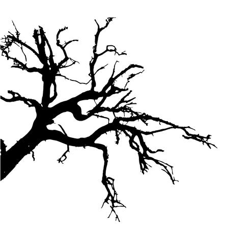vector negro silueta de un árbol desnudo