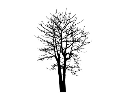 Vektor schwarze Silhouette eines kahlen Baum Vektorgrafik